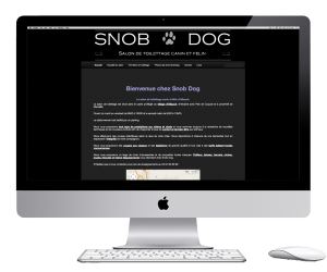 wordpress website for a shop near marseille