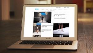 Monkies prestashop website on laptop. Paypal payment solution