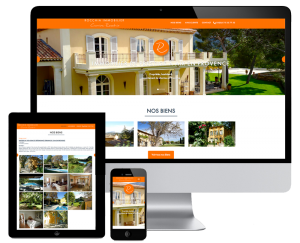 A real estate wordpress website