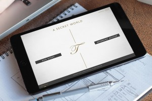 Responsive Website on Ipad