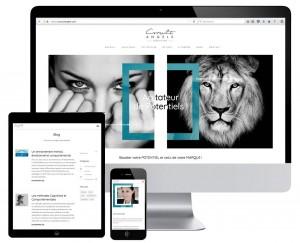 Création site Consulting aix en provence
